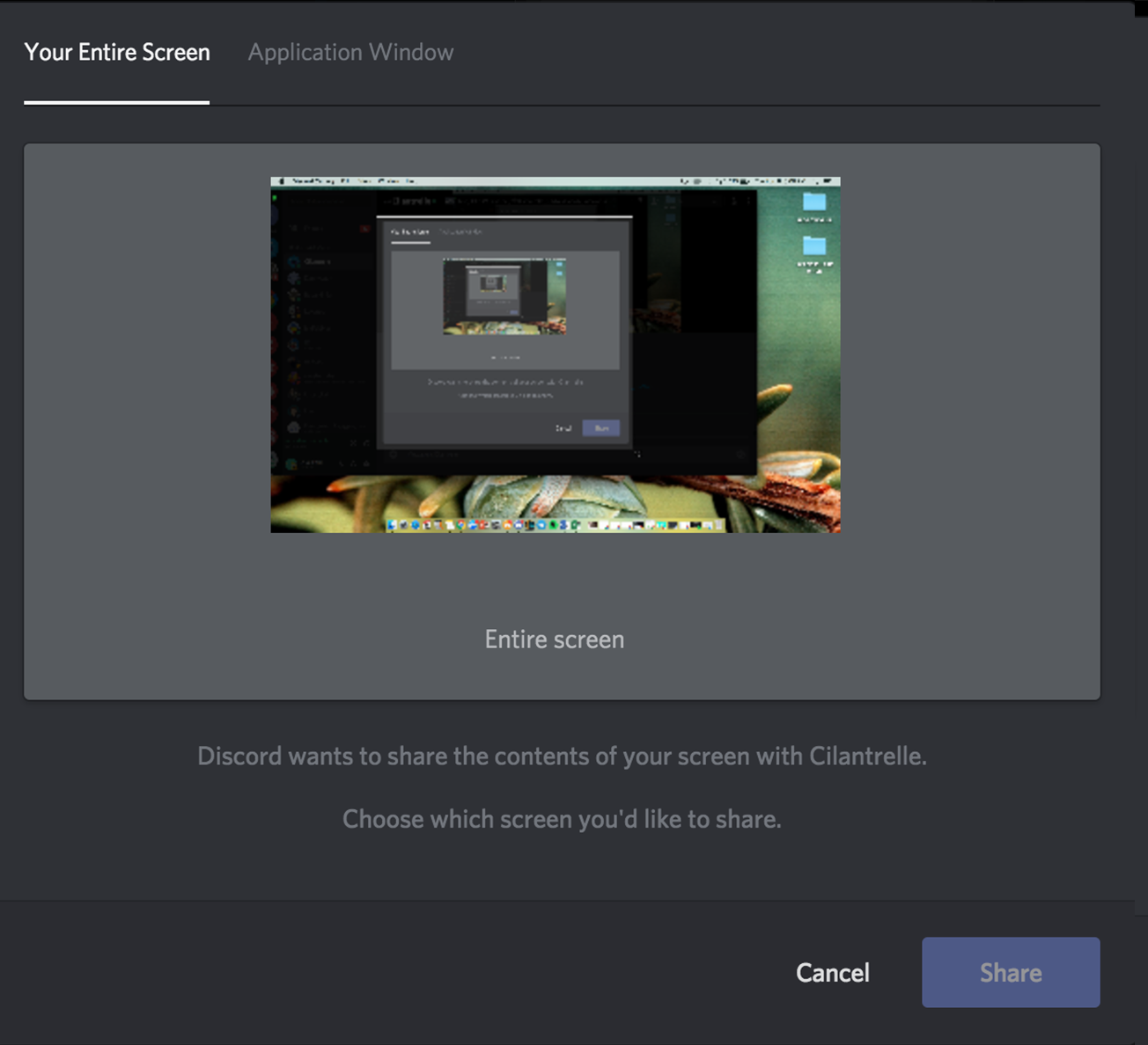 discord video chat using screen share