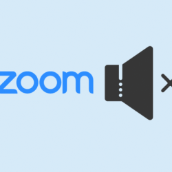 How to Mute Zoom Audio in Meeting? – Phone and PC