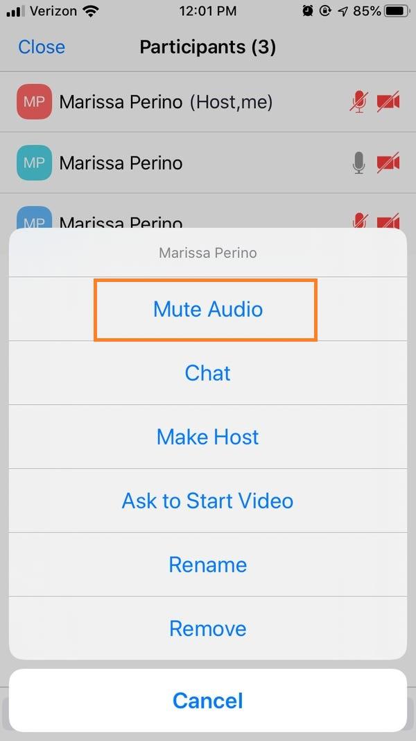 Mute Audio option on Phone