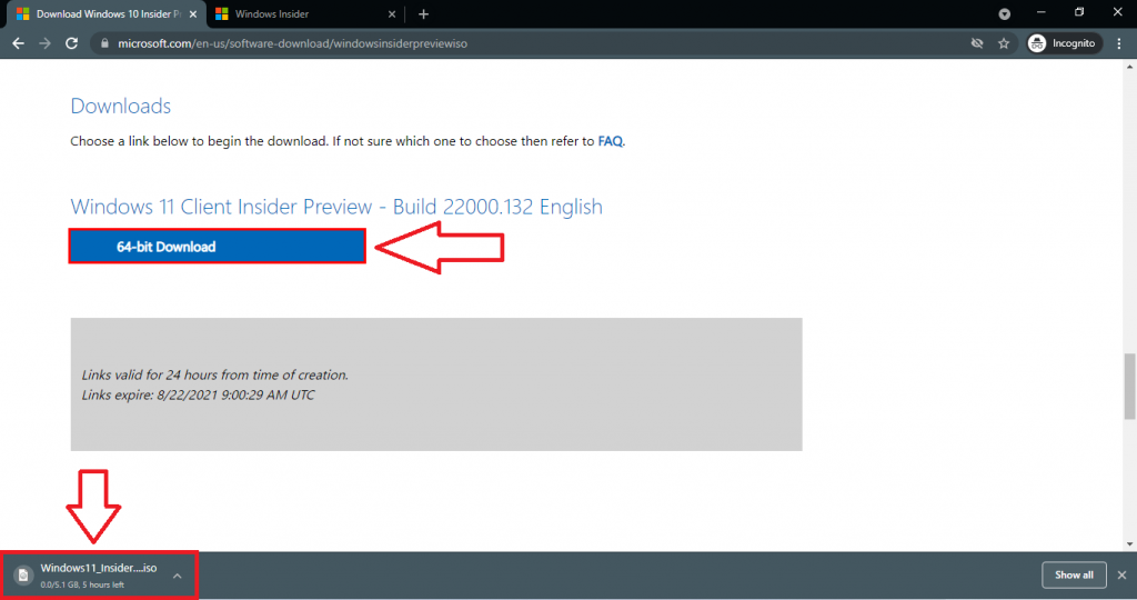 downloading windows 11 insider preview iso file