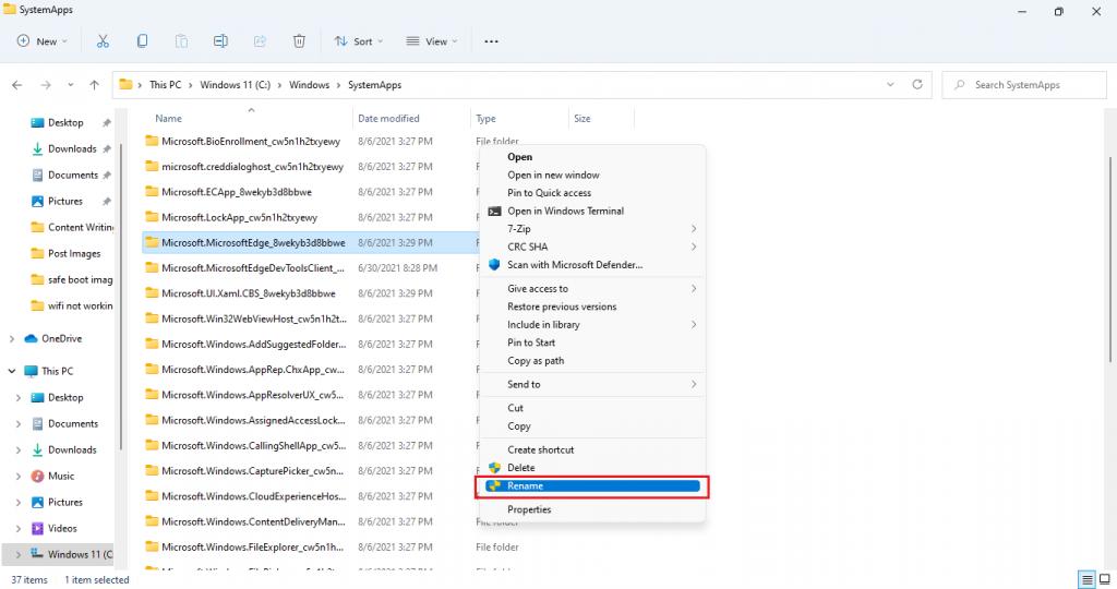 rename microsoft edge folder windows 11