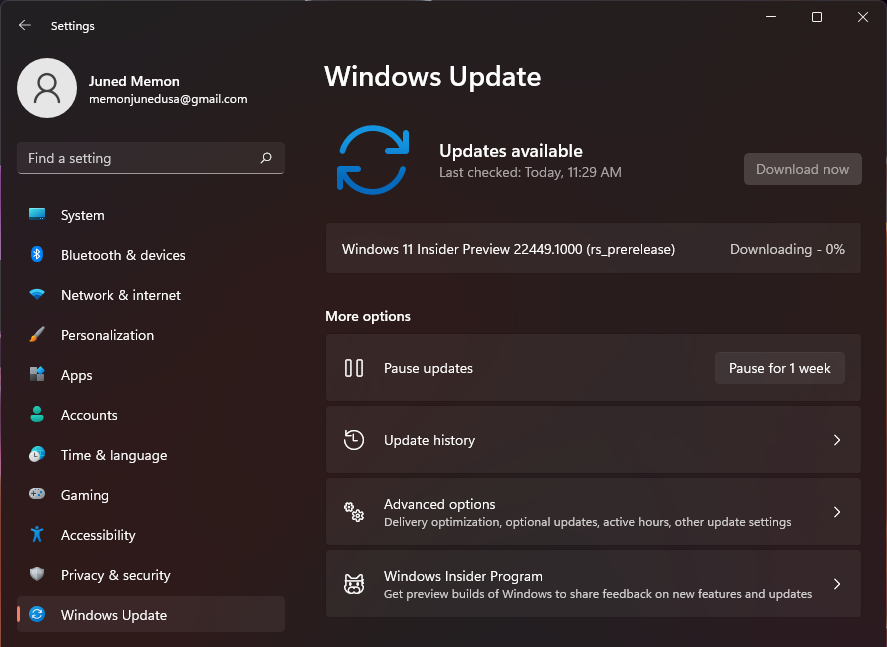 windows 11 22449.1000