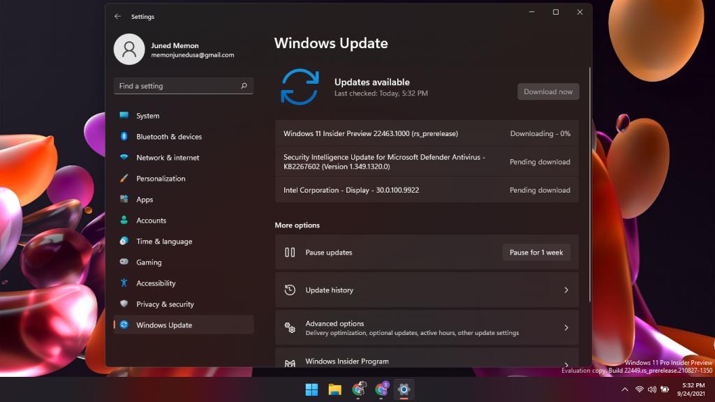 windows 11 22463.1000